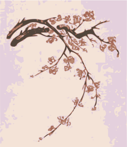 plumblossoms