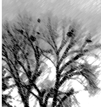 heron_treecharcoal