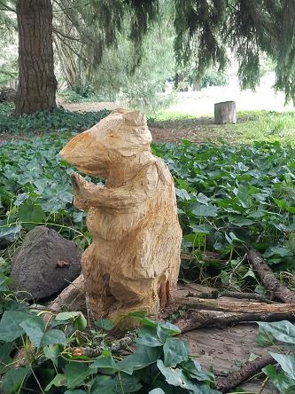 squirrel_rat