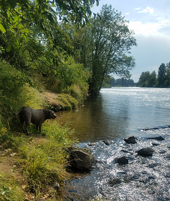 mercy_july_river